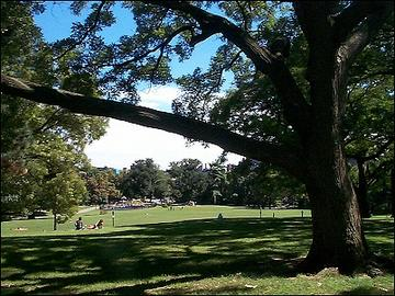 fort_greene_park_3_large
